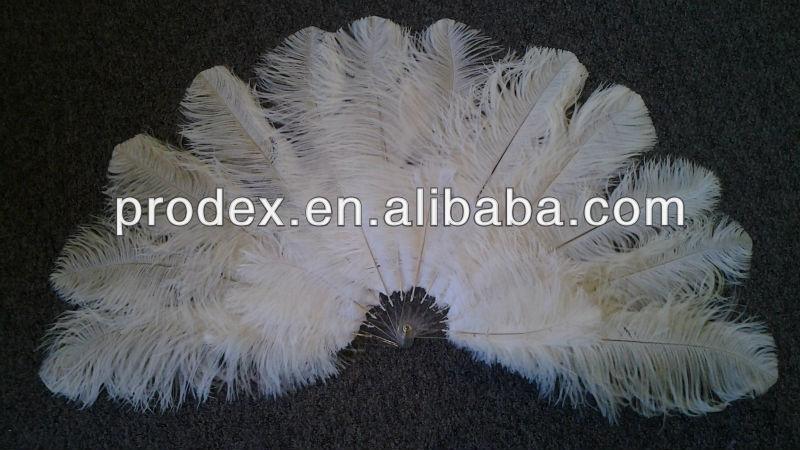 Поделка из перьев страуса 1