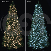 CET Solar Christmas Light New Products String Light For Decoration