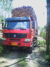 HOWO 6X4 dump truck for wood transportation truck