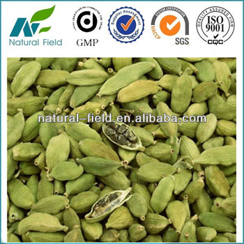 100% Pure natural cardamom extract/cardamom extract powder/cardamonin