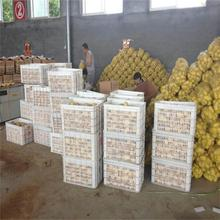 Hot selling frozen potato for wholesales