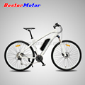 2016 New Design 250W Lithium Battery Electric Bike