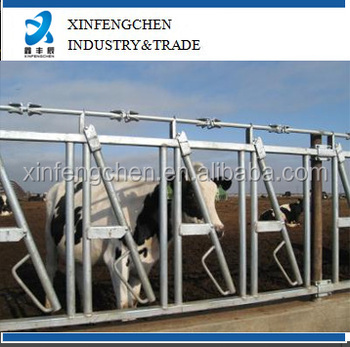 Factory direct supply cattle headlock for sale