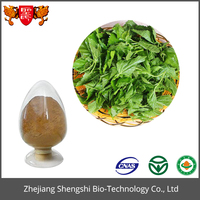 Zhejiang Shengshi Organic Mulberry Leaf Extract Herbal Extract Powder with GMP Standard