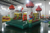 colorful desigh newest pumpkin bounce house