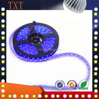 SMD3528 light Hot selling Waterproof 5050 Magic Addressable Digital Dream Color RGB LED Strip 60leds per Meter