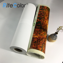 260gsm Waterproof Wide Format Roll Matte Polyester Eco Solvent Digital Printing Canvas for Roland / Mimaki Printers