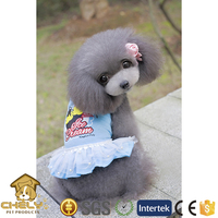 Cheap Profession Dog Clothing Supplier, Spring Coats For Large Dogs Pet Apparel & Accessories