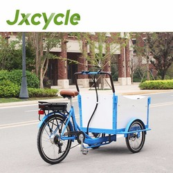 white and blue color cargo tricycle with electric motor