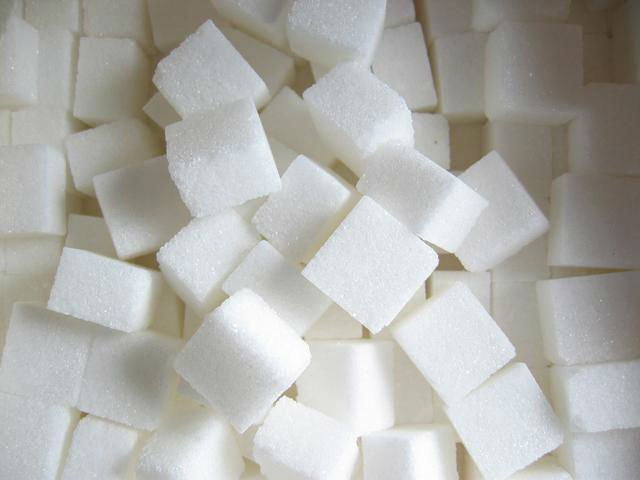 high quality stevia sugar
