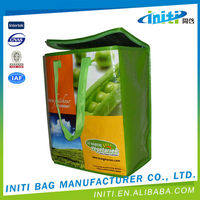 Promotional new product Insulating effect cooler bag for frozen food