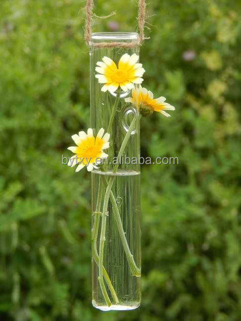 long stem tall clear cylinder glass vase for water plant