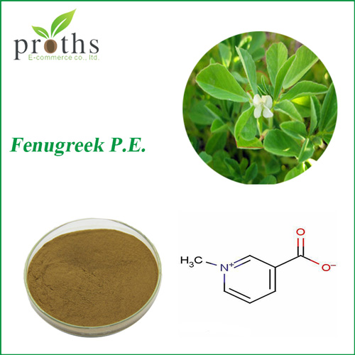 Hot sale discount black fenugreek seed extract powder