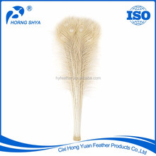 China Manufacturer High Prime Quality Wedding Decorations Peacock Feathers