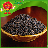 Wholesale Dried Black Pepper Raw Proccessing black pepper