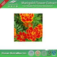 Top Quality Marigold Extract Lutein Oil 20% HPLC