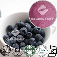 100% Natural frozen or Dried Blueberry fruit powder Extract