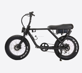 20inch 500w 750w 1000W Bafang Motor Electric Fat Bicycle 1000w Electric Bike