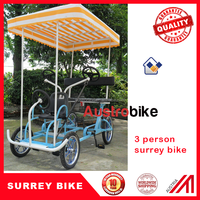 4 wheel 4 person surrey bike 2 person surrey bike hot sale for Europe
