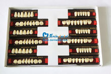 SND NEWEST porcelain denture teeth