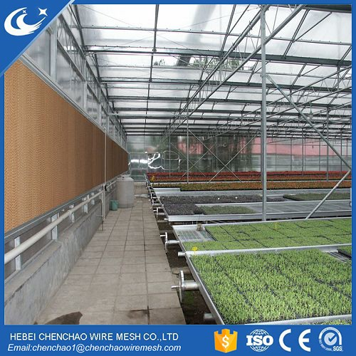 Stationary Commercial Potting Benches and Equipment seedling bed