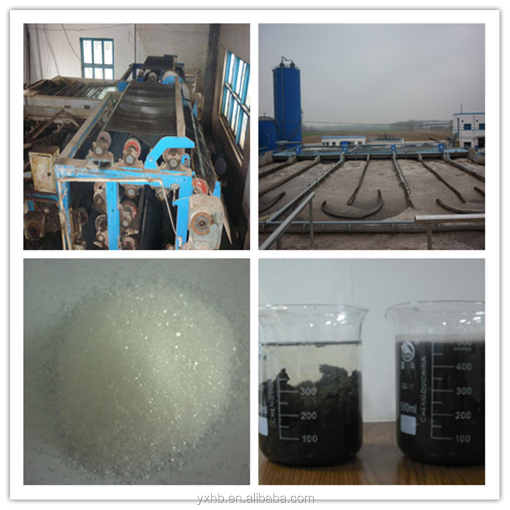 Cationic flocculant /Polyacrylamide chemicals for water treatment <strong>industry</strong>