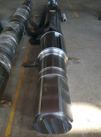 Marine roller shaft/spindle