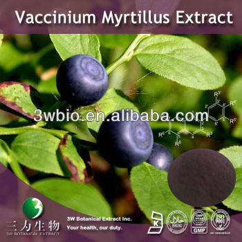 European Bilberry Extract Anthocyanin (Anthocyanidins glycoside)