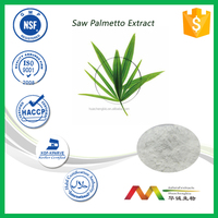 High quanlity natural Saw palmetto Extract