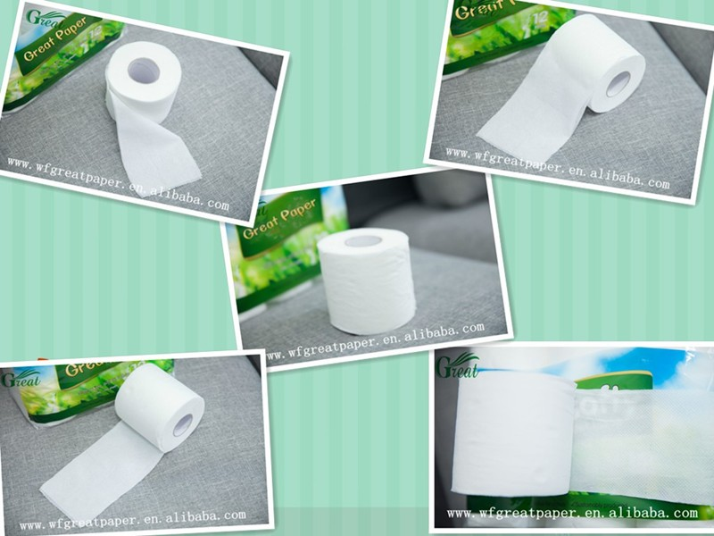 Toilet paper roll double ply with core for home