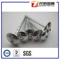 roofing nails with twisted shank umbrella head /roofing nails/high quality roofing nails