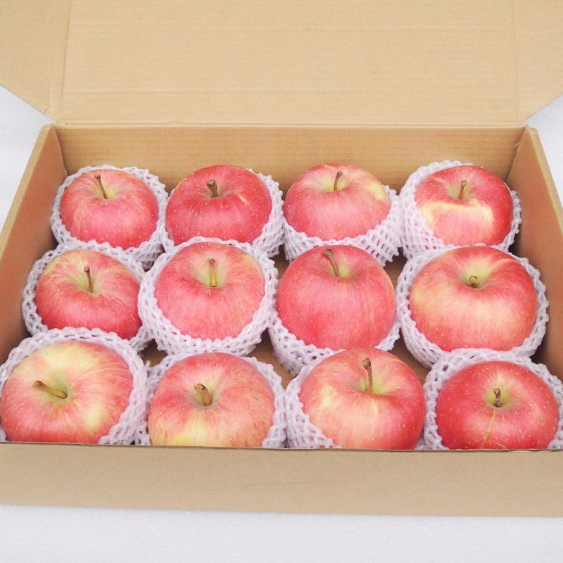 apple 11.jpg