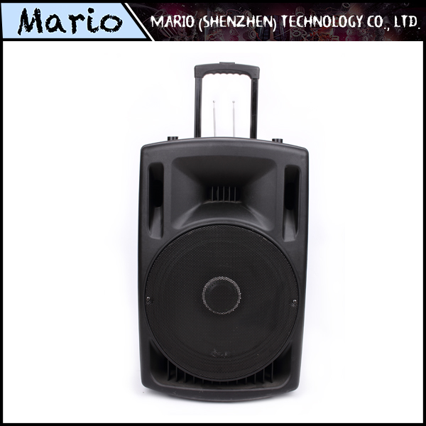 Professional bluetooth portable 15 inch speaker box