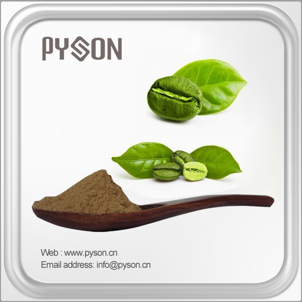 Brand new green coffee bean extract p.e. with high quality