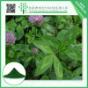 Manufacture supply 12% Isoflavones Red Clover Extract with low price