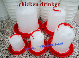 Waterers for chickens plastic water trough automatic chicken drinker