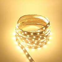 Columbia SMD strip led 2400K 300led non-waterproof 5050 led flexible light