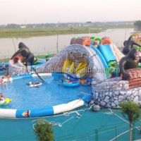 Giant Inflatable Water Park Inflatable Slide