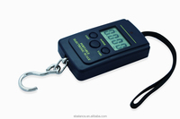 40 kg light small hanging electronic scale