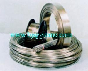 Stainless Steel Wires and Strips