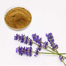 Lavender Flowers Extract Powder/Lavender Extract/Lavandula Angustifolia Mill.10:1