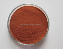 Factory supply Grape Seed Extract 100% natural Proanthocyanidin Powder