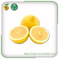 2015 organic fresh fruit gross juicy lemon for exporting