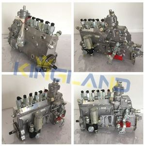 Diesel Engine YC6G YC4E fuel injection pump 0445020065