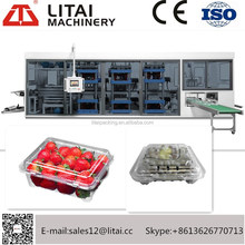 TTF-520A plastic fruit case /cake box forming Vacuum egg tray making plate forming machine
