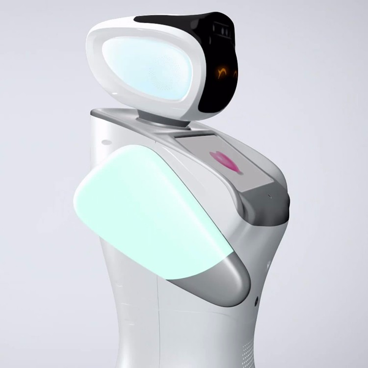 sanbot humanoid interactive programmed robot for students education