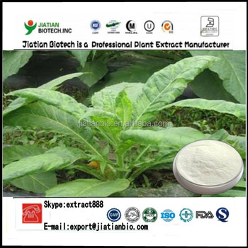 High quality tobacco leaf extract 15%-90% solanesol