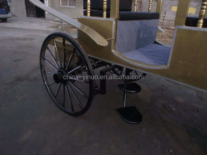 Yizhinuo Sightseeing horse carriage for Tourism, attractions, photography