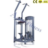 Best Fitness Equipment Assist Dip Chin / Dip Pull up Professional Gym Equipment