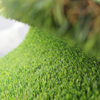 Natural Landscape Artificial Grass For Home
